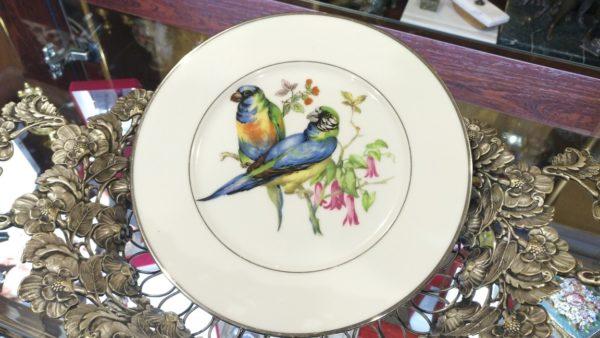 Декоративная тарелка Попугаи, купить декоративные тарелки, купить тарелки на стену, немецкий фарфор, купить антиквариат украина, декоративные тарелки украина